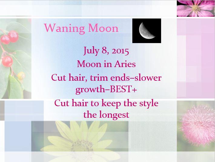 FB Hair Wane Botanical JPG