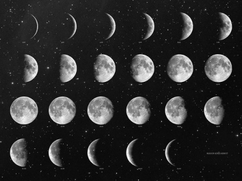 Image result for moon cycle images