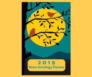 "2019 Moon Astrology Planner 6"" x 9"" Weekly"