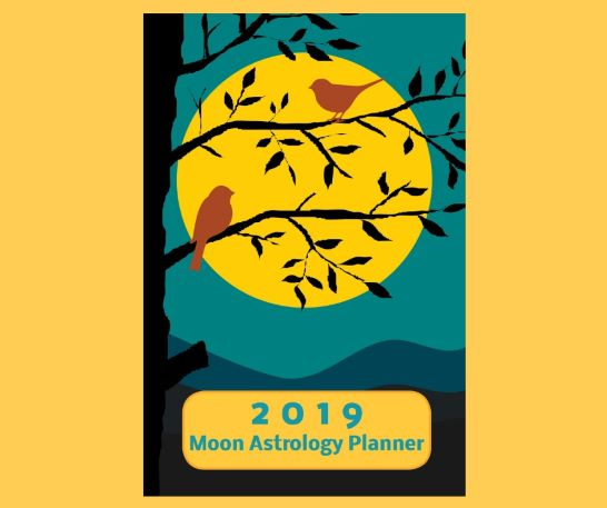 "2019 Moon Astrology Planner 6"" x 9"" Weekly"