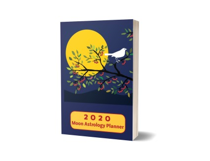 2020 Moon Astrology Planner